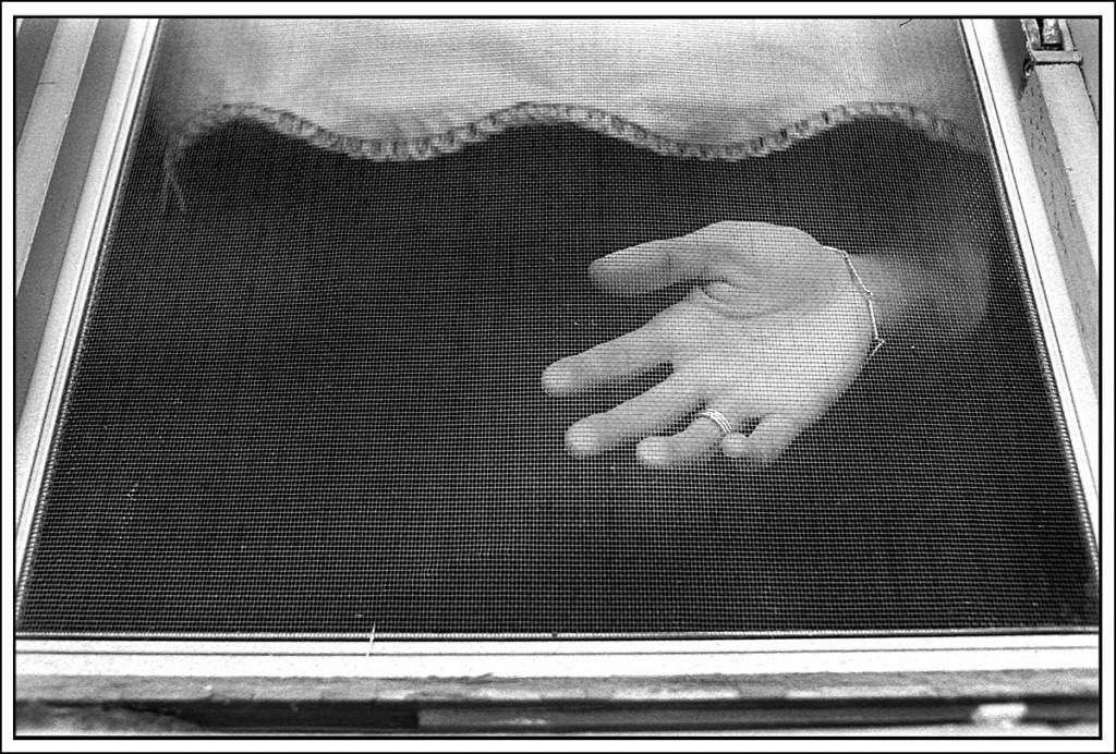 Hand_1_WEB