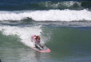 SurfingDogs_x_003_w1k.jpg