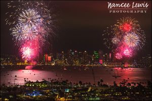 NEL_PHOTO_July4th2015_Fireworks_x_006.jpg