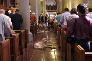 St_Pauls_Blessing_of_Animals_FB_002.jpg