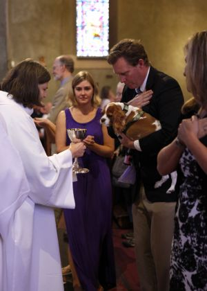 St_Pauls_Blessing_of_Animals_FB_008.jpg