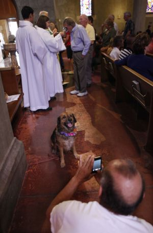 St_Pauls_Blessing_of_Animals_FB_010.jpg