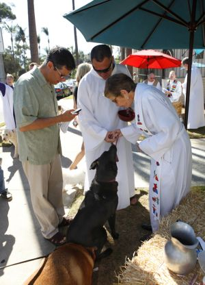 St_Pauls_Blessing_of_Animals_FB_013.jpg