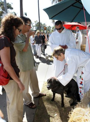 St_Pauls_Blessing_of_Animals_FB_014.jpg